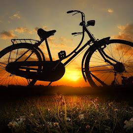 pit jowo wedok by Indra Prihantoro - Digital Art Things ( sunset, bicycle )