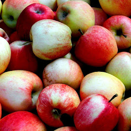 I love the color of these apples by Liz Hahn - Food & Drink Eating