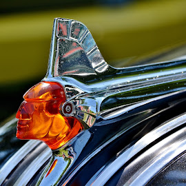 Hood Ornament in the Sun by Erin Czech - Artistic Objects Industrial Objects ( car, amber, chrome, male, ornament, hood,  )