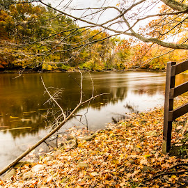 Beautiful fall... by Rajeev Krishnan - Nature Up Close Water ( autumn leaves, fall colors, waterscape, autumn, fall )