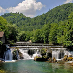 Kosteljski buk (Bosna i hercegovina)! by Jože Borišek - Uncategorized All Uncategorized