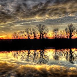 Sunset at Swamp by Tihomir Beller - Landscapes Sunsets & Sunrises