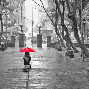 Liquid afternoon by Andro Zeledón - City,  Street & Park  Street Scenes ( morazan, rainy, selective color, park, white, andro, foto calle, street photography, winter, san jose, woman, costa rica, red umbrella, public, parque, rain )