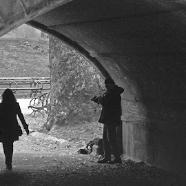 Dark tunnel, Music and Love by Sunny Guddoo - People Couples ( music, love, dark, couple, new york, central park, tunnel,  )