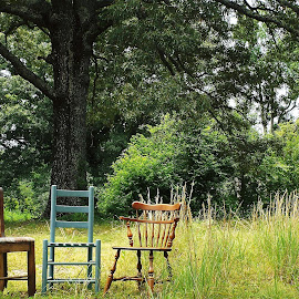 Trio of Chairs by Keith Bass - Artistic Objects Furniture ( chair, arkansas photographer, ladder back chair, rustic chair, ethan allen chair, oak, furniture, arkansas, oak tree )