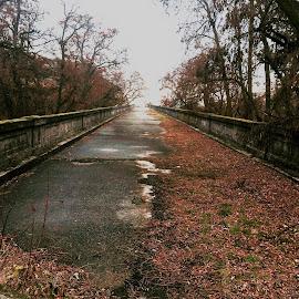 Road to Nowhere by Gary Winterholler - Transportation Roads