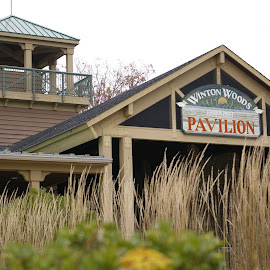 Harbor Point Pavilion by Pat Lasley - Buildings & Architecture Public & Historical ( park, visitor center, fall, buildings, pavilion, architecture )