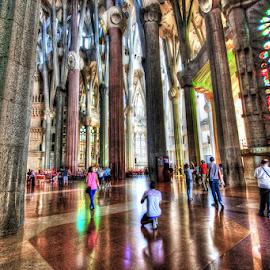 La Sagrada Familia by Amit Rajput - Buildings & Architecture Places of Worship ( roof, church, la sagrada familia, family, basilica, barcelona, sacred,  )