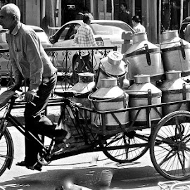 THE MILK MAN by Doug Hilson - Transportation Bicycles ( land, device, transportation )