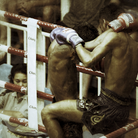 Muay Thai 1 by Bim Bom - Sports & Fitness Boxing ( ring, muay thai, thailand, combat, martial art, boxing, phuket, fighter, kickboxing )