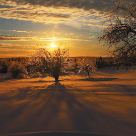 Winter Sunset by Dan Kaye - Novices Only Landscapes ( winter, ice storm, canada, snow, newbrunswick, st.stephen )