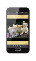 Screenshot of Wallpaper Live Puppy Pet Free