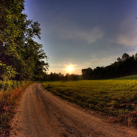 Summer Moon Road by Mark Six - Landscapes Forests ( moon road landscape scenic night,  )