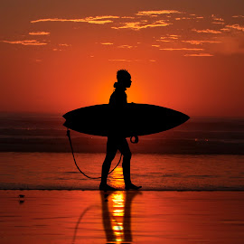 Surfer's Sunset by John Wilson - Sports & Fitness Surfing ( surfing, dude, surfer, sunset, surfboard, ocean, beach, surf,  )