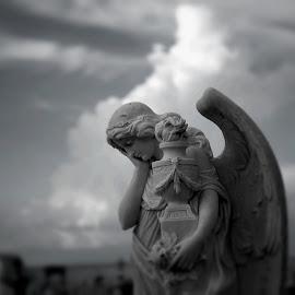 by Alfonso Bullock - Buildings & Architecture Statues & Monuments ( cementerio santa maría magdalena de pazzis )