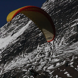 Paragliding  by Naveen Aggarwal  - Sports & Fitness Snow Sports