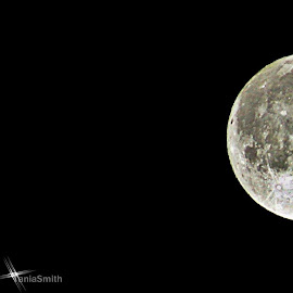 Scotland Moon 8/10/14 by Tania Smith - News & Events Politics