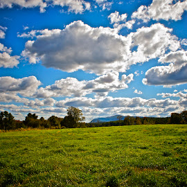 Berkshire Landscape by Alexis Picheny - Landscapes Prairies, Meadows & Fields ( clouds, field, mountain, berkshires, nature, greatbarrington, landscape, massachusetts )
