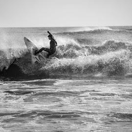 © Lesley-Jo Thompson 2014 by Lesley-Jo Thompson - Sports & Fitness Surfing