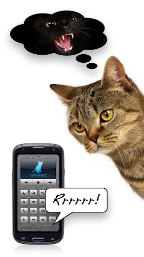 Human-to-Cat Translator - screenshot