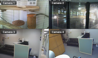 Screenshot of Viewer for GeoVision ip camera