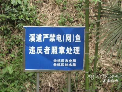 溪道严禁电(网)鱼