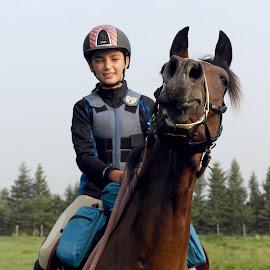 Goofy Face by Deanna Ramsay - Animals Horses ( horseback riding, mare, bay, horse, arabian,  )