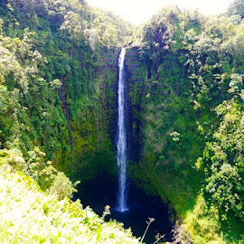 Waterfall in Maui by Tyrell Heaton - Instagram & Mobile iPhone ( iphone4, waterfall, hawaii )