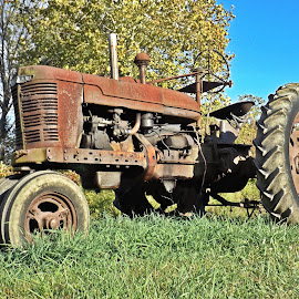 Old Fellow #2 by Scott Strausser - Novices Only Objects & Still Life ( farm, old, farm equipment, work tool, rusted, transportation, rusty, rust, antique, tractor, farming )