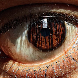the EYE 2 by Pranay Deep - Novices Only Macro
