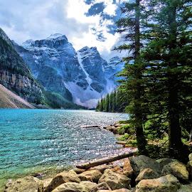 moraine lake by Leslie Collins - Landscapes Mountains & Hills ( water, mountains, trees, lake, landscape )