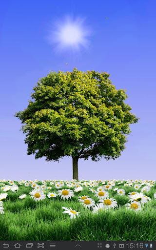 Summer Trees Live Wallpaper