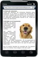 Screenshot of Como Entrenar Un Perro - Guia