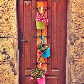 welcome by Dobrin Anca - Buildings & Architecture Other Exteriors ( home, dream, door, sun, flower,  )