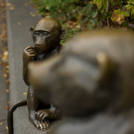 Thinkin' bout monkey stuff by Matt Goodwin - City,  Street & Park  City Parks ( statue, park, monkeys, woodland park, monkey )