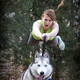 Taking her owner for a stroll. by Stephen Goodhue - Animals - Dogs Running ( levitation, husky, redhead, composite, kaia )