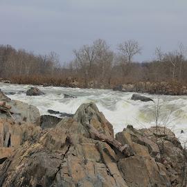 Great Falls by Chris Torrie - Nature Up Close Water ( water, great falls, falls, virginia, va )