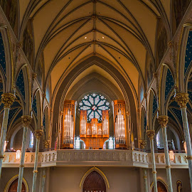 Cathedral of St. John the Baptist by Brandon Satinsky - Buildings & Architecture Places of Worship ( interior, church, georgia, cathedral, architecture )