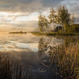 Morning by Zenonas Mockus - Landscapes Sunsets & Sunrises