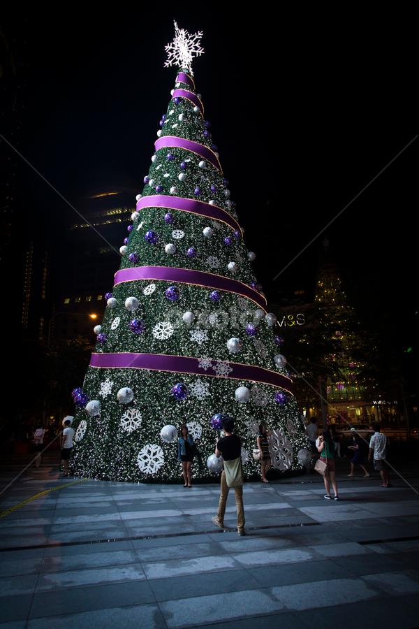 BIG Xmas tree by Bert De Wilde - Public Holidays Christmas ( mood factory, art, color, artistic, purple, creativity, lighting, lights, fun )