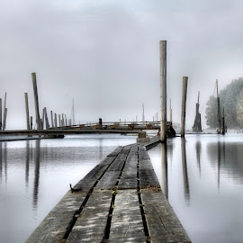 Foggy River by Jon Eggen - Landscapes Waterscapes ( water, fog, glomma, reflections, poles, fetsund, norway, river )