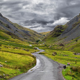Lake District - Honister Pass by Lukas Proszowski - Landscapes Mountains & Hills ( england, mountain, nature, road, lake district,  )