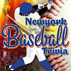 NY Baseball Trivia icon