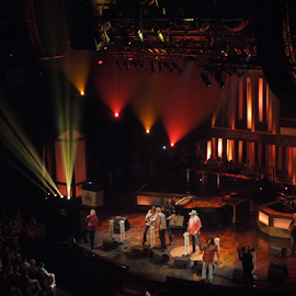 Grand Ole Opry by Dawn Schriebl Hartley - People Musicians & Entertainers (  )
