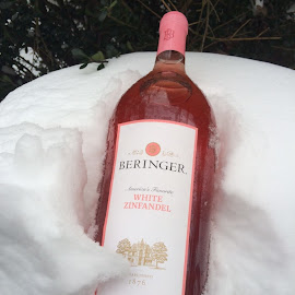Wine chilling in the snow! by Terry Hairston - Food & Drink Alcohol & Drinks