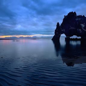 Thirsty troll by Lucian Satmarean - Landscapes Beaches ( iceland, lava, stone, sea, hvitserkur, rock, sunrise, beach, formation )