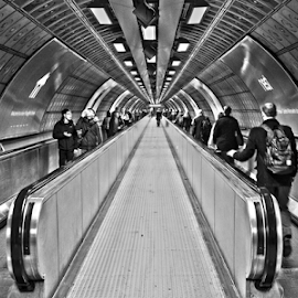 London underground by Mike Ross - Buildings & Architecture Other Interior (  )