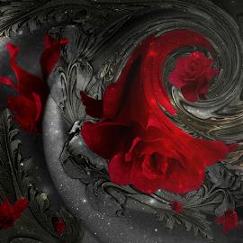 STARRY NIGHT by Carmen Velcic - Digital Art Abstract ( fantasy, abstract, red, stars, roses, night, flowers, digital )