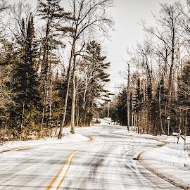 Winding Travels Door County by Nikki Vig - Landscapes Travel ( door county, snow, trees, travel, road )