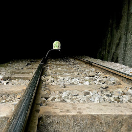 Train tunnel in the Andes by Tyrell Heaton - Transportation Railway Tracks ( train tunnel in the andes )